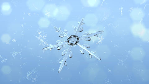 Snow Crystals single front Animation