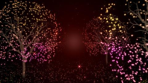 Illuminations tree Animation