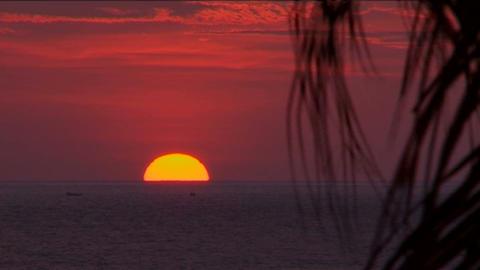 Negombo sunset Stock Video Footage