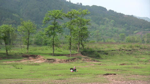 Landscape Footage