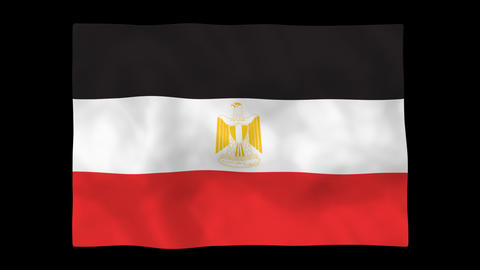 National flag A49 EGY HD Stock Video Footage