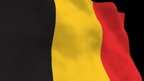 National Flag B18 BEL HD Animation