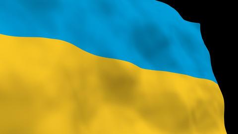National Flag B48 UKR HD Stock Video Footage