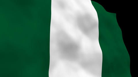 National Flag B50 NGR HD Stock Video Footage