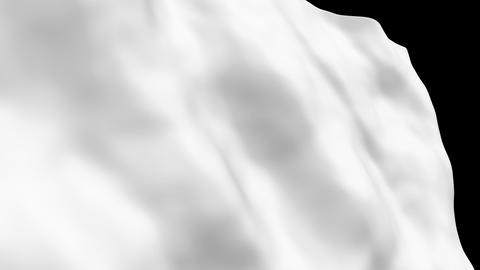 National flag B78 WHI HD Stock Video Footage
