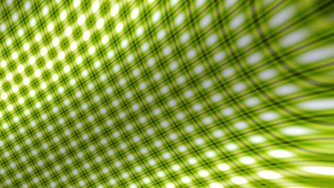 green curve grid Animation