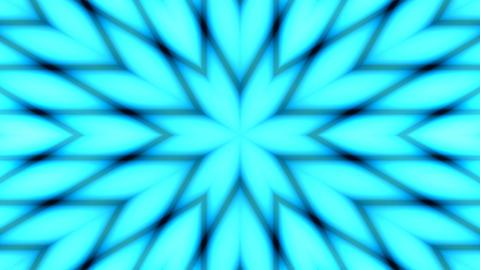 six petal flower pattern Stock Video Footage