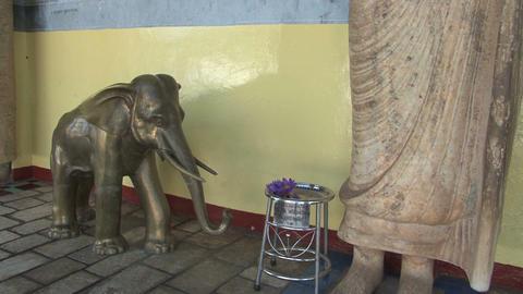 Temple in Anuradhapura, Sri Lanka Stock Video Footage