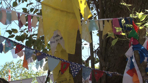 Praying flags in Bodhi-tree near Temple in Sri Lanka Stock Video Footage
