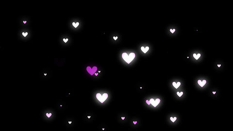 Heart Pink Black stock footage