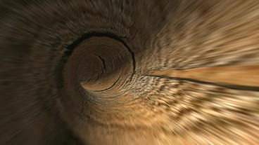 Flying In Hairy Wood Tunnel Hole stock footage