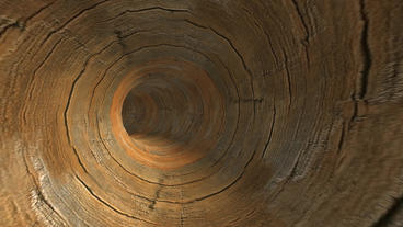 flying in wood text tunnel hole Stock Video Footage