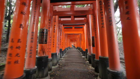 Fushimi Inari shrine Stock Video Footage