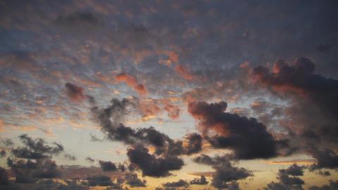 Purple sky Footage