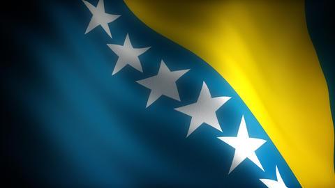Flag of Bosnia-Herzegovina Stock Video Footage
