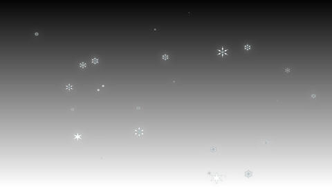Snow Gray stock footage
