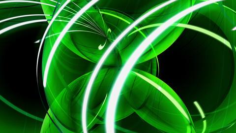 Green spherical leaves Stock Video Footage