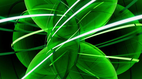 Green spherical leaves Stock Video Footage