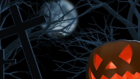Halloween Pumpkin on Graveyard Stock Video Footage