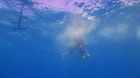 Divers preparing to dive Stock Video Footage