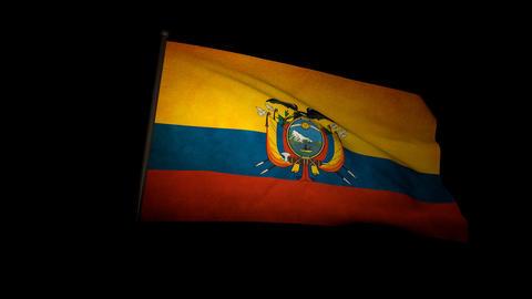Flag Ecuador 01 Stock Video Footage