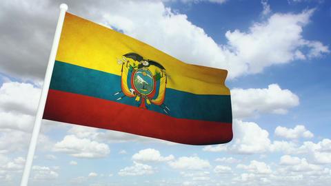 Flag Ecuador 02 Stock Video Footage