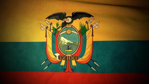 Flag Ecuador 04 Stock Video Footage