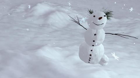 snowman top angle Stock Video Footage