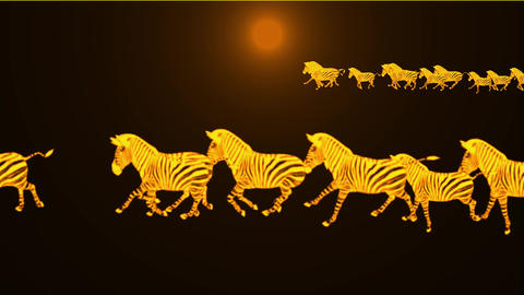 a group of zebra running in dusk Stock Video Footage