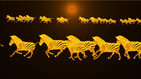 a group of zebra running in dusk Animation