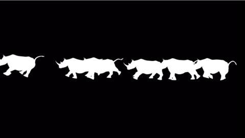 rhino silhouette running Stock Video Footage