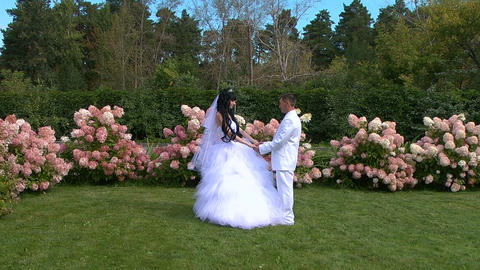 Glidecam: Bride and groom Stock Video Footage