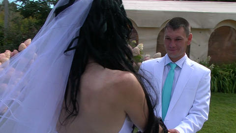 Glidecam: Bride and groom Footage