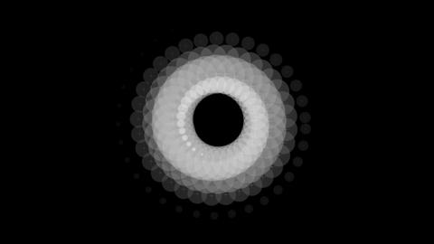 white circle rotation Animation