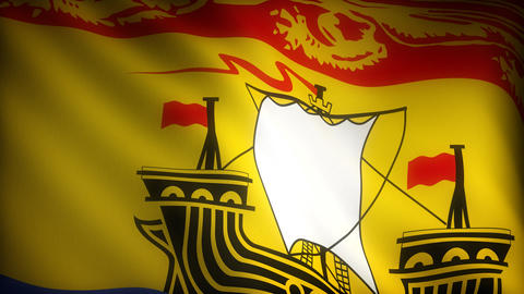Flag of New Brunswick Stock Video Footage