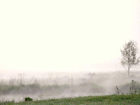 Morning mist over the water Stock Video Footage