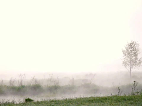 Morning mist over the water Footage