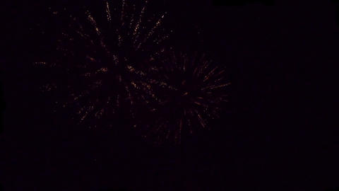 Firework HD Stock Video Footage