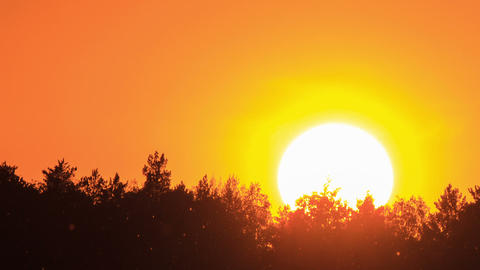Sunset close-up TimeLapse Stock Video Footage