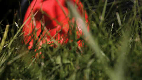 Gardening - Lawn mower cutting the grass. Close up Stock Video Footage