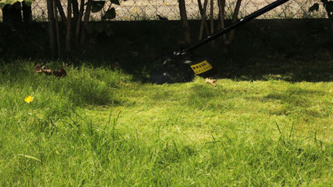 Man cutting grass with lawn mower Stock Video Footage
