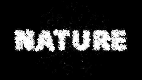 NATURE Text 3D Motion Graphics with Alpha Stock Video Footage