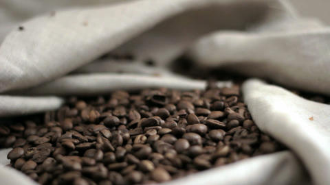 Coffee beans. Moving Camera Footage