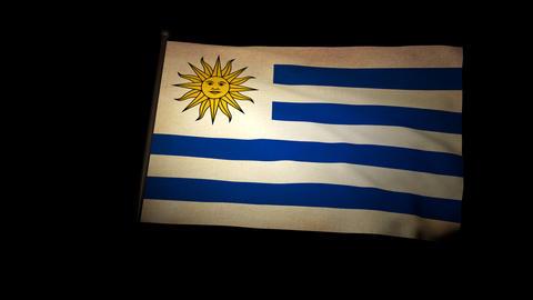 Flag Uruguay 01 Stock Video Footage