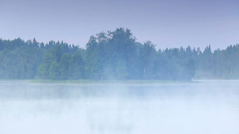 Mist over the lake Moiseevskoe, Valdaysky district Stock Video Footage