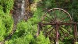 Charlie Taylor Waterwheel Footage