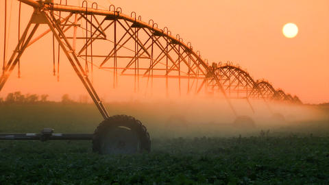 Crop Irrigation at Sunset Footage