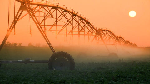 Crop Irrigation at Sunset Stock Video Footage