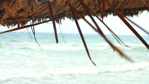 Umbrella of palm leaves Stock Video Footage