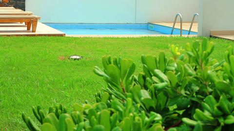Swimming Pool In The Garden stock footage